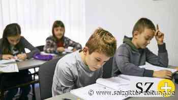 Bildung: Psychiater schlägt Alarm: Warum Schule Kinder dümmer macht