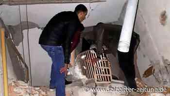 Beben: Schweres Erdbeben erschüttert die Türkei – vier Tote
