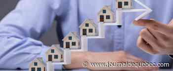Immobilier: prévisions 2020