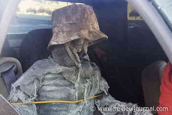 Arizona man cited for using fake skeleton to drive in HOV lane