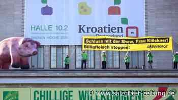 Schlechte Haltung: Greenpeace: Supermärkte setzen vor allem auf Billigfleisch