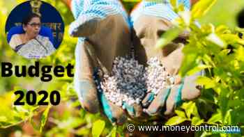 Budget 2020: Govt may consider import duty cut on raw material for fertiliser industry