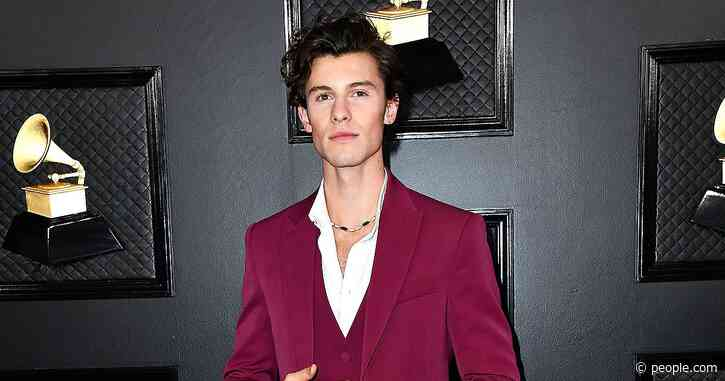 Shawn Mendes Walks 2020 Grammys Red Carpet Without Camila Cabello in Sharp Louis Vuitton Suit