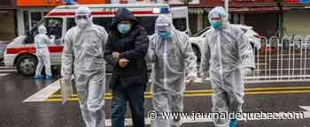 Virus chinois: le nombre de cas pourrait être supérieur à 40 000