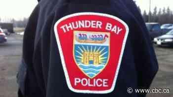 Thunder Bay Police seize firearm, make arrests after incident on city's north side