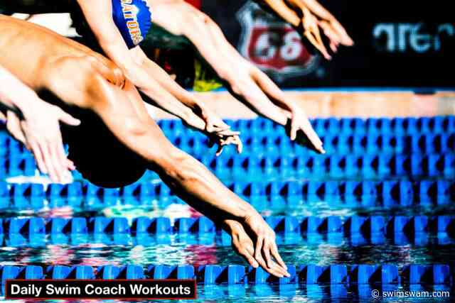 Daily Swim Coach Workout #52
