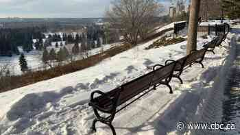 Dozens of memorial plaques stolen from benches in Edmonton's river valley, parks
