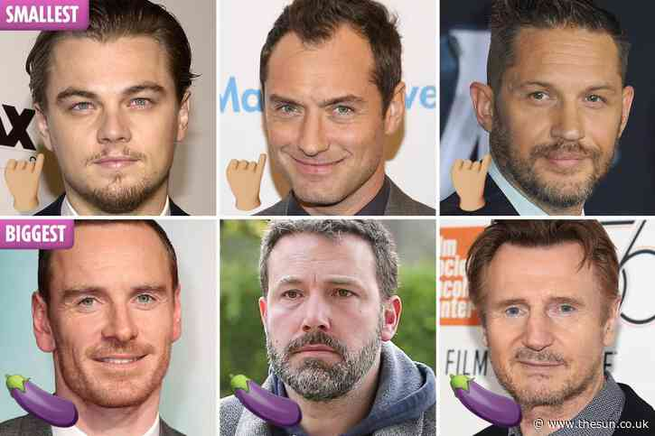 Jude Law & Leonardo DiCaprio make list of 'smallest penises in Hollywood' – while Liam Neeson is among 'most hung'