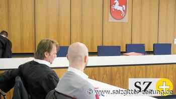 Gewerbsmäßiger Diebstahl - Zweieinhalb Jahre Haft für Peiner
