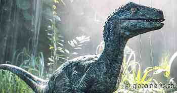 'Jurassic World' Live: Dino tour lumbering into Canada this year