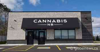 Cannabis NB sees increase in sales: financial results