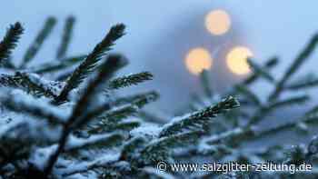 Schnee im Harz und Gewitter an der See in Niedersachsen