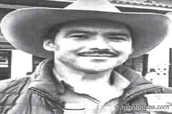 Picadura de abejorro mató a un campesino en Saboyá   HSB Noticias - HSB Noticias