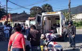 Muere adulto mayor arrollado en El Guayabal - El Sol de Orizaba