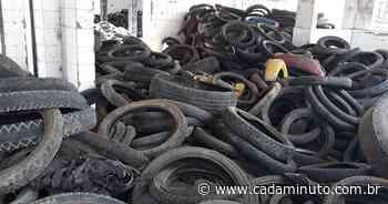 Prefeitura de Santana do Ipanema retira 4.647 pneus inservíveis do - Cada Minuto