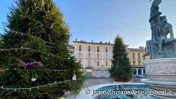 Casteggio, i vandali danneggiano gli alberi di Natale e gli addobbi dei bimbi - La Provincia Pavese