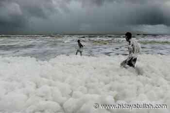 Busa Beracun Memenuhi Pantai di Chennai India - Hidyatullah.com mengabarkan kebenaran
