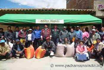 Agrorural entregará semillas de alfalfa a productores de Atuncolla recién en la segunda quincena del mes de febrero - Pachamama radio 850 AM