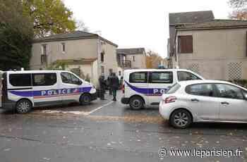 Emerainville : des policiers en nombre et un hélicoptère aux Montagnes bleues - Le Parisien