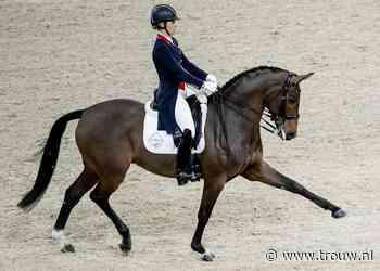 Met de roskam door de paardensport: lijden de dieren niet? - Trouw