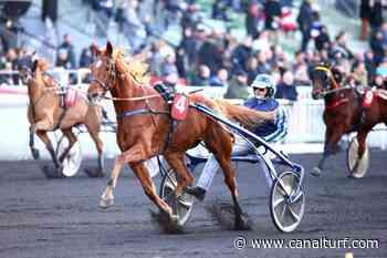 Dimanche à Vincennes, Pick5 Prix de Limours. CHAMPION DORE très nettement - Canal Turf