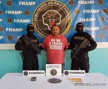 """""""El Gordo Bustillo"""" es capturado por la FNAMP en La Masica, Atlántida - canal6.com.hn"""
