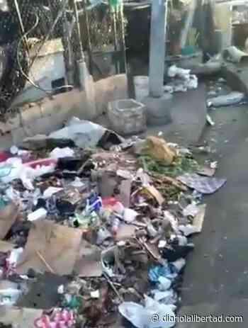 Gravísima situación de contaminación en mercado El Playón - Diario La Libertad
