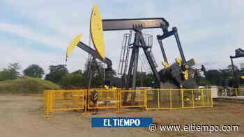 Proyecto Teca- Cocorná inició 2020 con récord de producción - El Tiempo