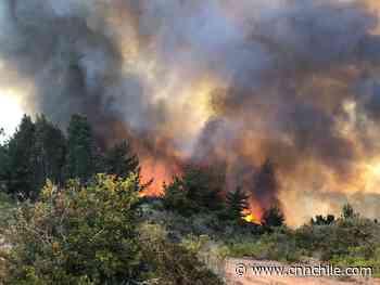 Por incendio forestal en El Totoral decretan alerta roja en El Quisco - CNN Chile