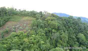 Protestas en Soatá por delimitación del bosque del Chicamocha - Caracol Radio