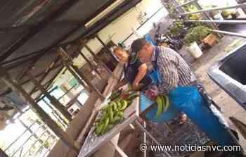 Caso de la finca Bellavista de Roldanillo a audiencia pública - Noticias NVC