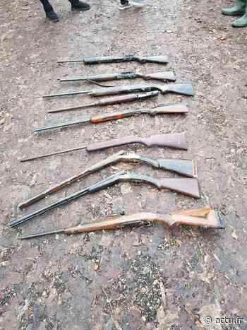 Rosny-sur-Seine. Pêche à l'aimant : neuf fusils de chasse remontent à la surface - actu.fr
