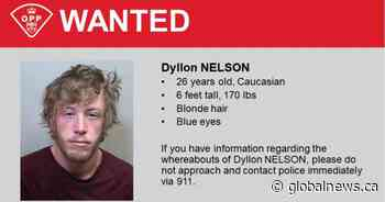Man wanted in Deseronto home invasion attempt arrested in Kingston - Global News