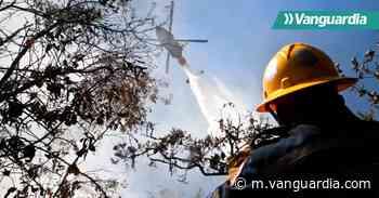 Video: Las devastadoras cifras que deja el incendio en Charta, Santander - Vanguardia