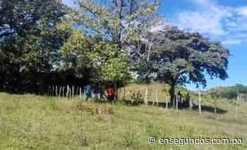 Investigan muerte de un hombre en Cañazas en Veraguas - En Segundos