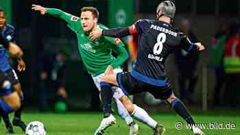 Werder Bremen: Philipp Bargfrede & Fin Bartels sind Hoffnungsträger - BILD