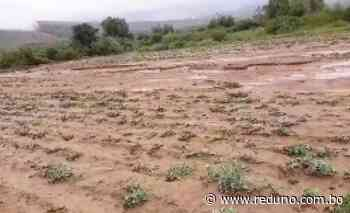 Tres comunidades afectadas por desborde de ríos en Mizque - Red Uno de Bolivia