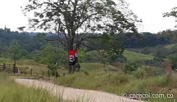 Desactivan artefacto explosivo con bandera del ELN en Mistrató, Risaralda - Caracol Radio