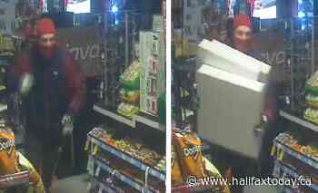 RCMP look for suspects after break and enter in Lower Sackville (4 photos) - HalifaxToday.ca