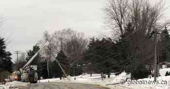 Power restored after 2 poles downed in Quispamsis, N.B. - Global News