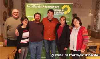 Eine grüne Liste für den Ort Thalmassing - Landkreis Regensburg - Nachrichten - Mittelbayerische