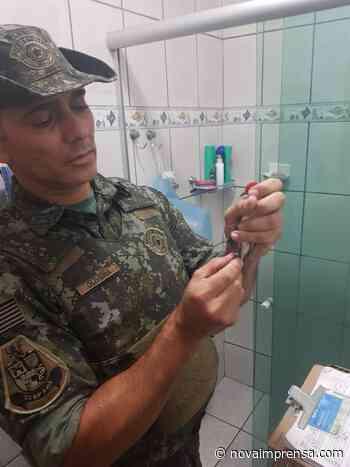 Pássaros silvestres em cativeiro são resgatados no Itatinga - Litoral Norte