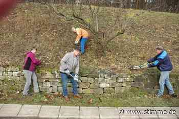 Große Beteiligung am Landschaftspflegetag rund um Brackenheim - Heilbronner Stimme