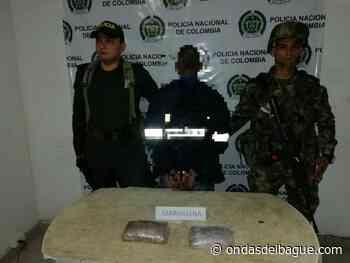Capturaron a un hombre en Ataco a quien se le halló en su poder más de un kilo de marihuana - Ondas de Ibagué