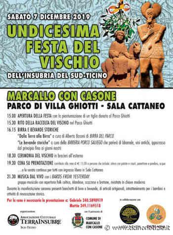 Marcallo con Casone, a Sant'Ambrogio la festa del vischio con Terra Insubre - Ticino Notizie