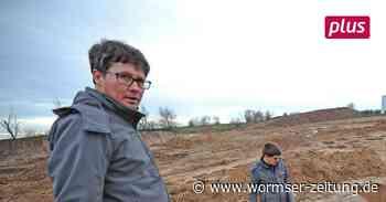 Archäologen stoßen bei Monsheim auf Spuren der Jungsteinzeit - Wormser Zeitung