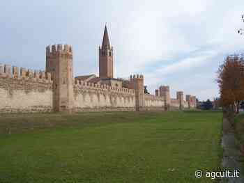Padova, De Poli (FI-Udc): Mibact intervenga per salvare Montagnana - AgCult