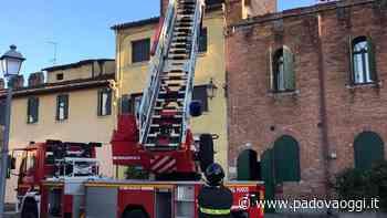 Nuovi crolli a Montagnana: cadono a terra alcuni frammenti dei merli trecenteschi - PadovaOggi