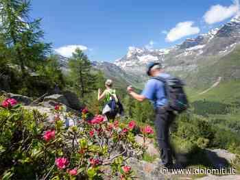 Escursione guidata in Val Passiria con visita di una caseificio - Dolomiti.it