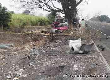 Taxista de la CDMX se mata en la autopista La Tinaja- Cosamaloapan - plumas libres